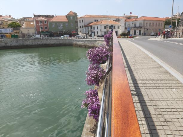 Running, cycling, or hiking Peniche, Peniche - Kinto